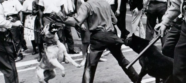 Angry Democrats set the dogs loose on blacks.